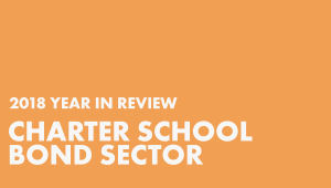 2018 Year in Review: Charter School Bond Sector in white lettering with orange background